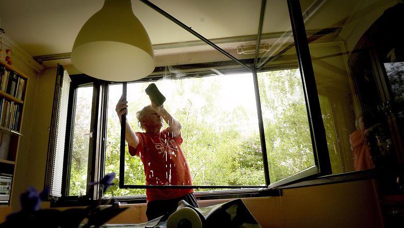 ikkunapesu