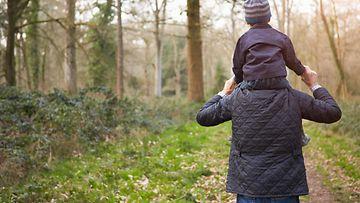 metsä, isoisä, lapsi