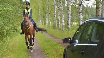 hevonen ja auto