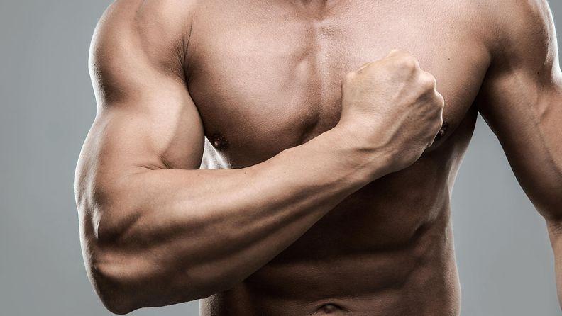 mies, treeni, lihakset