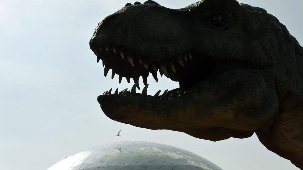 Isoin Dinosaurus