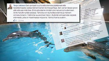 Tarja Jokinen kommentoi Särkänniemen delfiinien siirrosta aiheutunutta kohua Facebookissa.