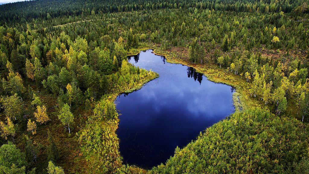 Neitokainen Järvi
