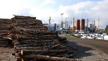 talous vienti paperiteollisuus metsäteollisuus