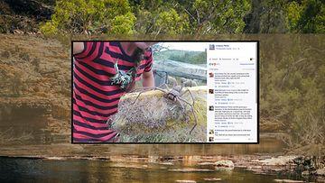 Kuvituskuva, kuvakaappaus Facebookista