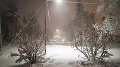 Tuuli yltyy ensi yönä myrskyksi – itsenäisyyspäivä on kylmä ja kaunis