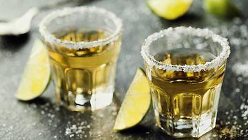 tequila laihduttaminen