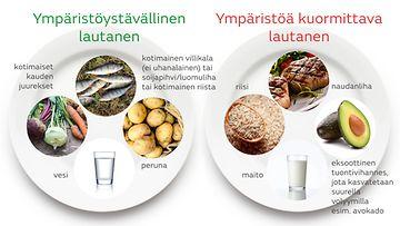 ympäristöystävällinen lautanen