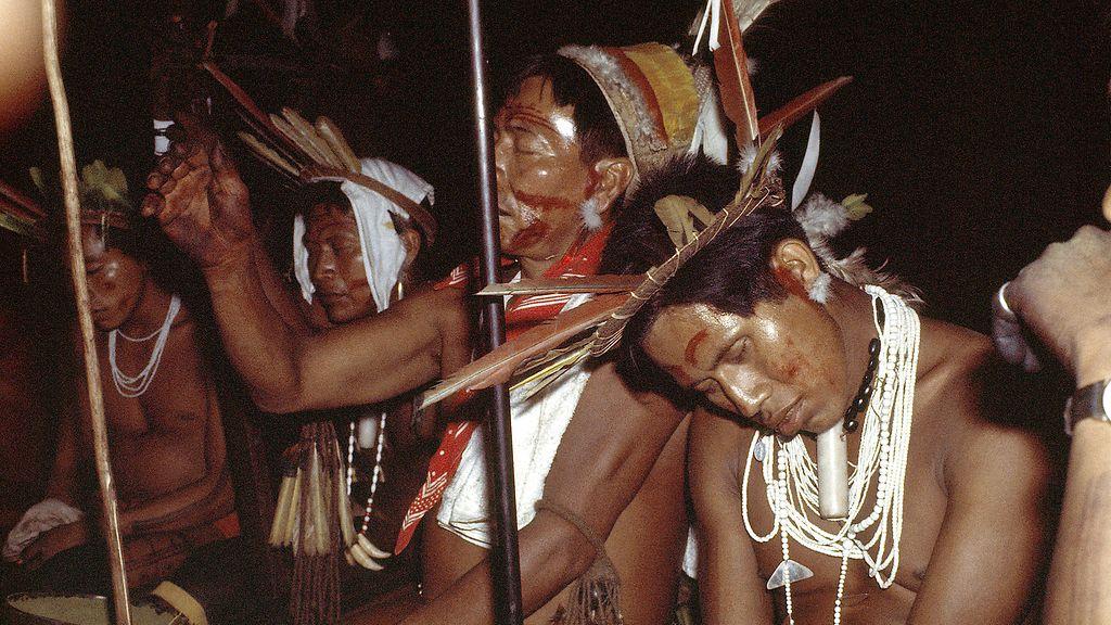 Ayahuasca Kokemuksia