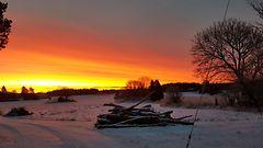 Lukijoiden kuvat: keskiviikkoaamuun herättiin upeissa väreissä – punaisten sävyjen koko kirjo taivaalla