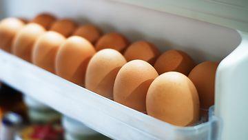 Kananmuna kananmunat munat jääkaappi
