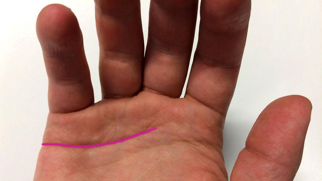 Käden Viivat M