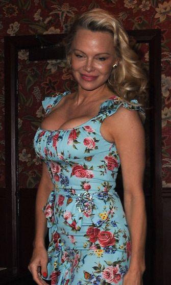 Pamela Anderson 3.4.2017 2