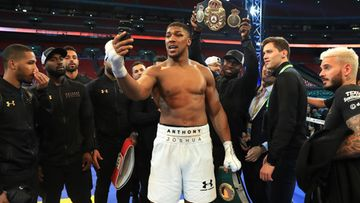 Anthony Joshua 2017 (3)