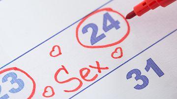seksi, kalenteri