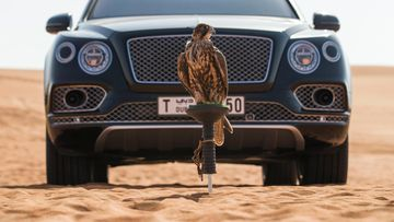 Bentley Bentayga Falconry by Mulliner (18)