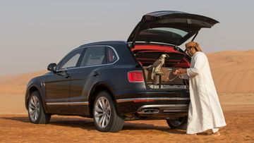 Bentley Bentayga Falconry by Mulliner (10)