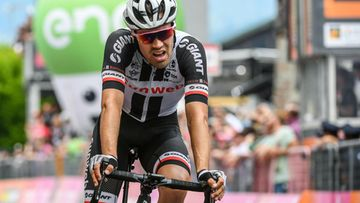 Tom Dumoulin (1)