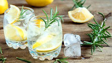 gintonic gin tonic