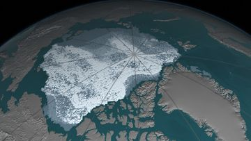 A-Older thicker Arctic sea ice declines