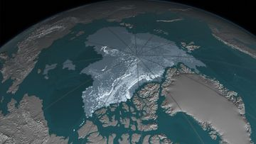 B-Older thicker Arctic sea ice declines