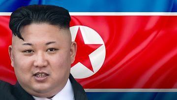 Kim Jong-Un, kuvitus