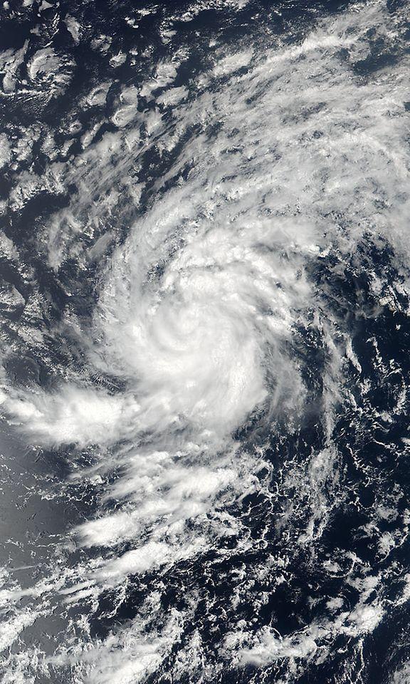 Irma Myrsky