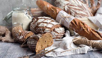 leipälajitelma