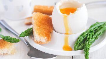 Eggs soldiers munia ja sotilaita kananmuna