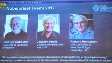 Kemian Nobel