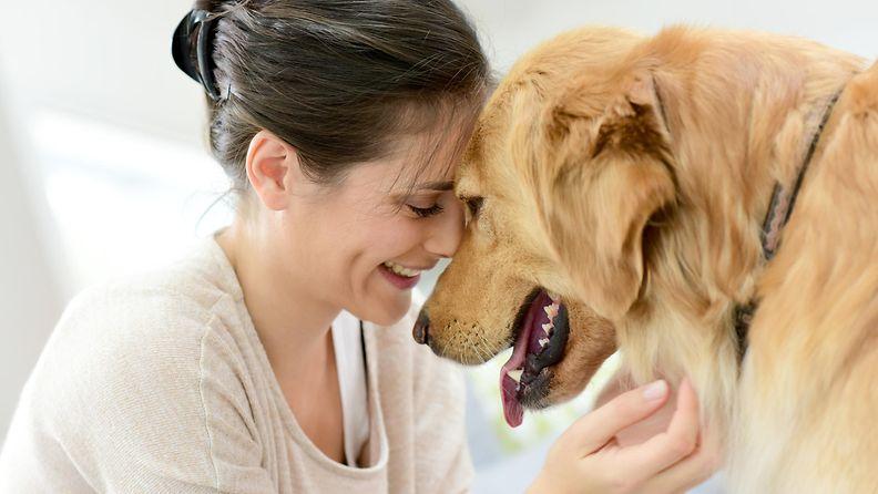 nainen, koira