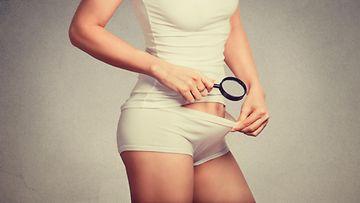 vagina, naisen alapää