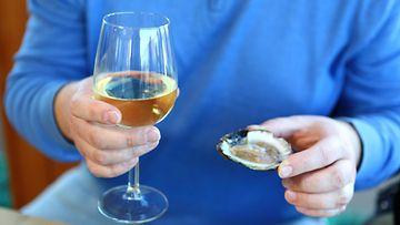 osteri viini