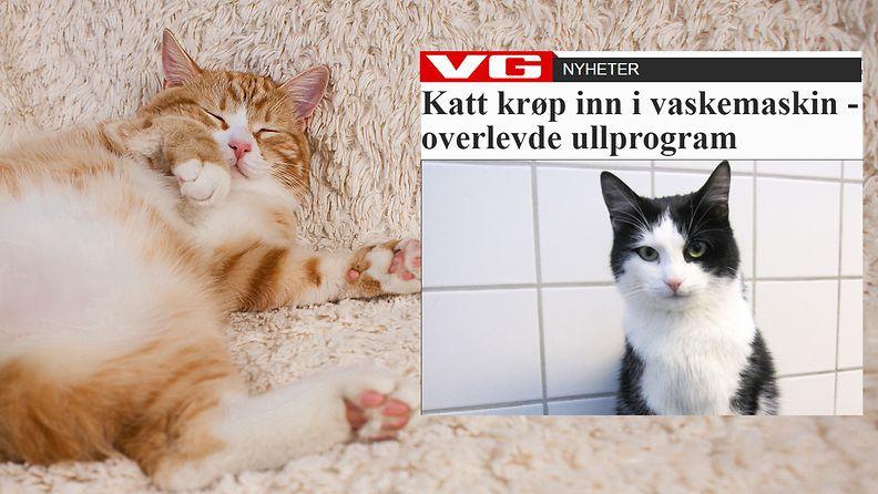 Kuvituskuvatoisenkuvanlähde Vg.no