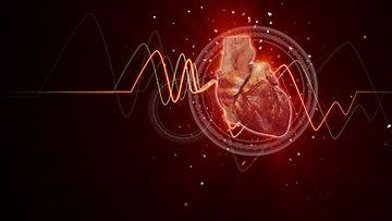 sydän-(4)