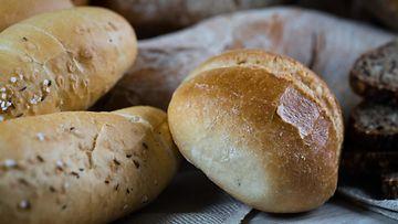leipä, leivät
