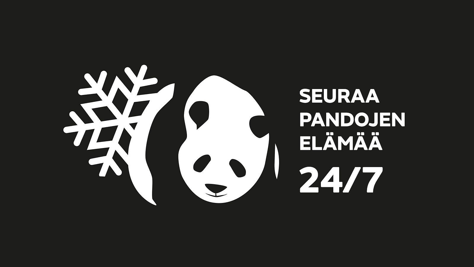 Pandalive Mtv