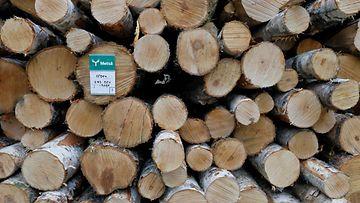 1.03749085 aop metsäteollisuus tukit puut