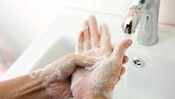 käsien pesu