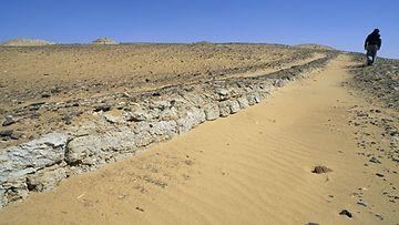 egyptin aavikko