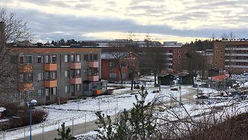 Rinkeby9