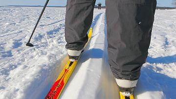 AOP sukset hiihto hiihtäminen kuvituskuva 1.03283405