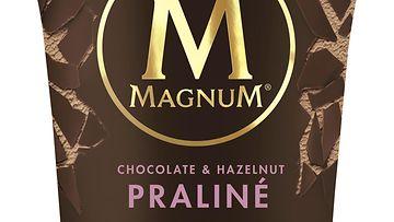 magnum chocolate hazelnut praliné