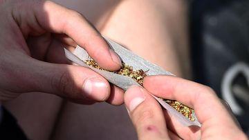cannabis kannabis marihuana marijuana sätkä jointti h_52953652