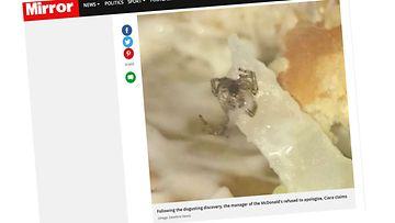 mirrorhämähäkki