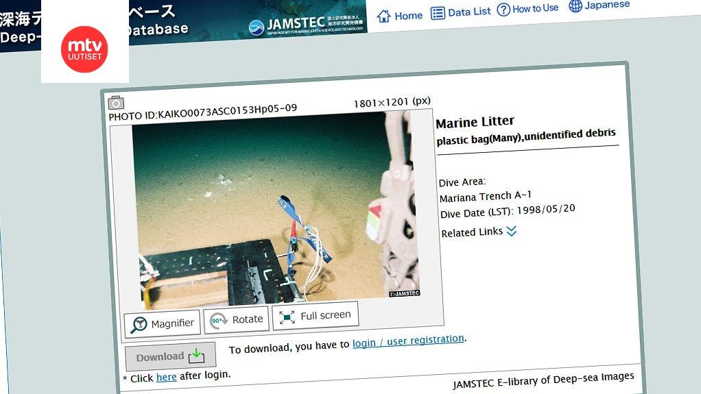 Virtuaalinen dating Technologies SL