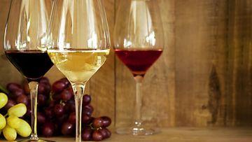 viinilasit rosé valkoviini punaviini viinilasi
