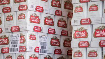 Stella artois olut