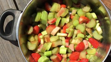 raparperit  ja mansikat