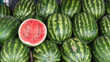 vesimeloni kokonainen meloni